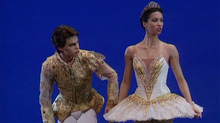 Gala du Jeune Ballet de France (III/II)