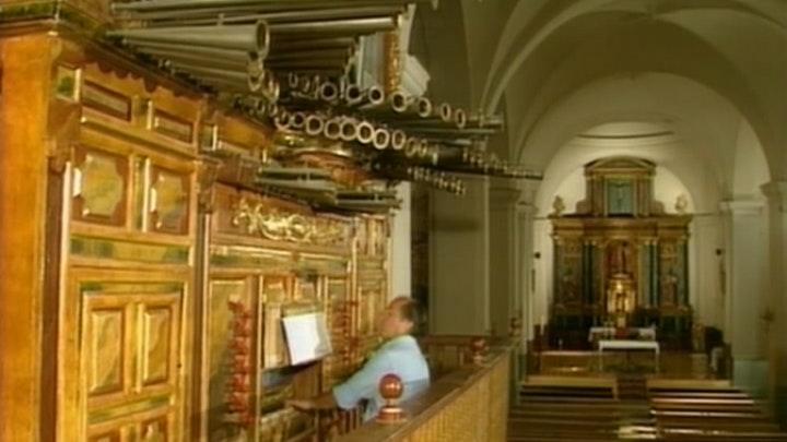 Latin Origins of the Organ